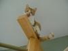 Katzenbetreuung Wien - Bewegung der Katze / Typisch dabei ist eine angehobenen Pfote, die in der Luft schwebt.